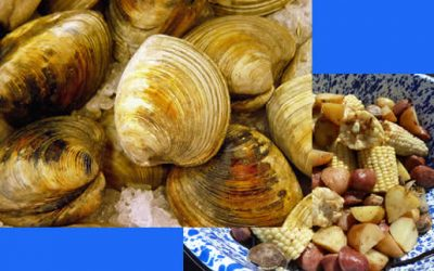 Annual Clam Bake | October 12th