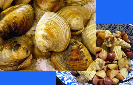 Annual Clam Bake | October 13th